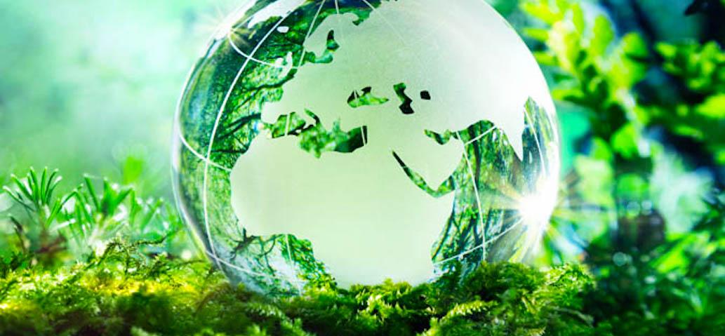 Canon SA on its way towards climate neutrality