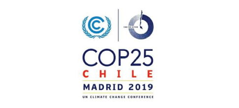 Climate Neutral Group's Expectations from the Climate Summit in Madrid