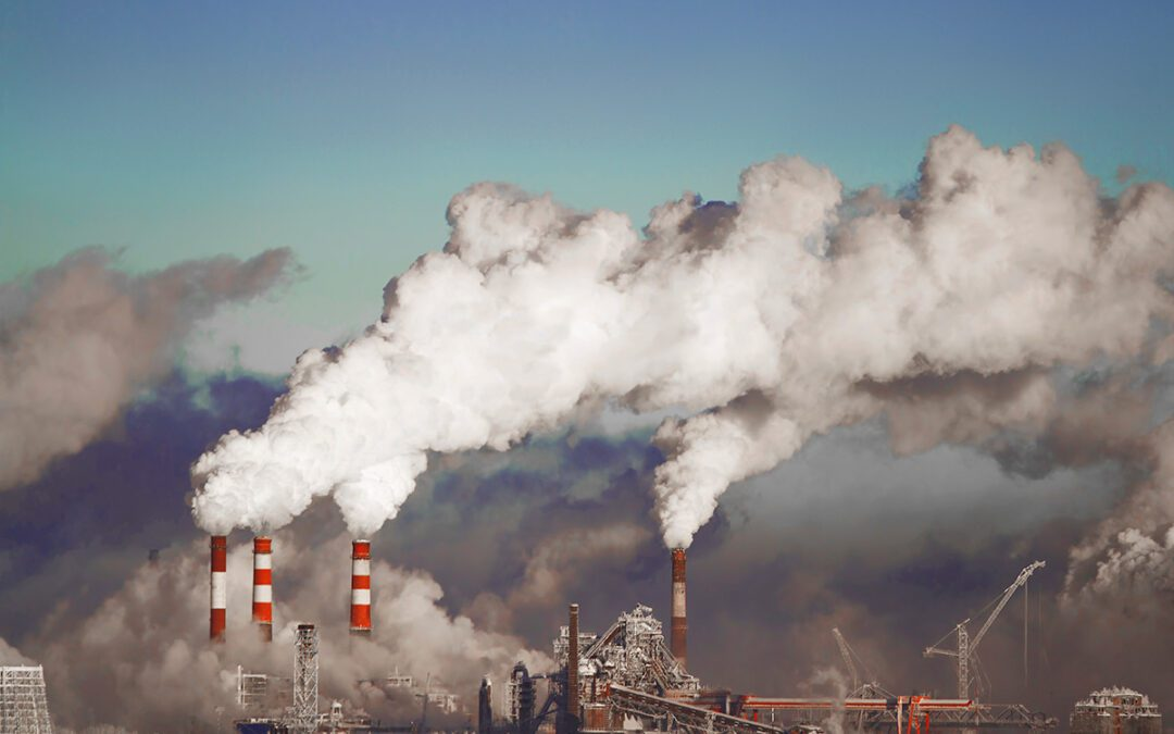 South Africa launches Carbon Offset Administration System